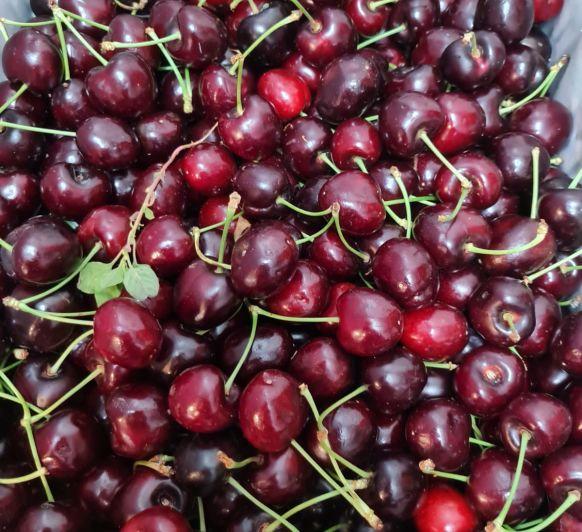 Clafoutis de cerezas