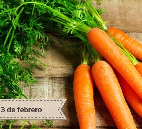 Día Internacional de la Zanahoría